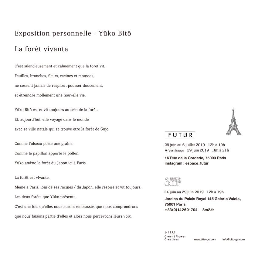DM_France_02