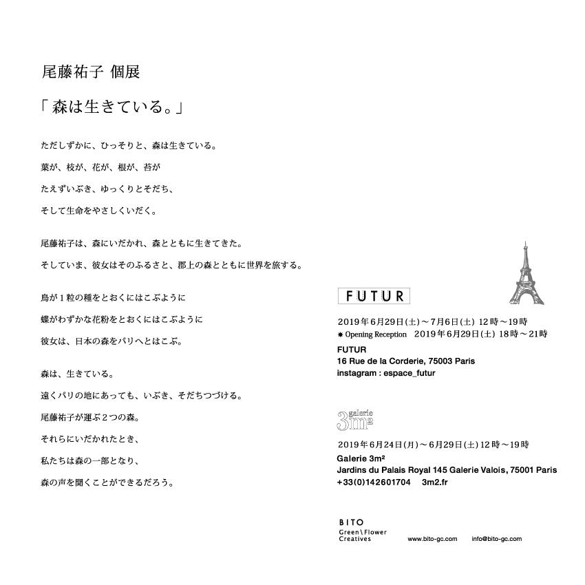 DM_Japan_02